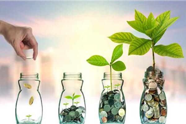 Bật mí 3 ý tưởng kinh doanh ít vốn lợi nhuận cao
